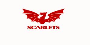 Scarlet Rugby Club